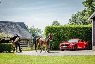 ford mustang haras normandie